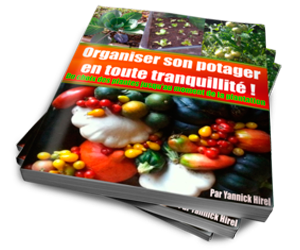 Organiser son potager
