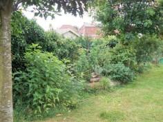 Jardin 2015 suite 8
