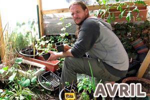 Calendrier jardin potager en permaculture permaculture for Vide jardin 2016 la garnache