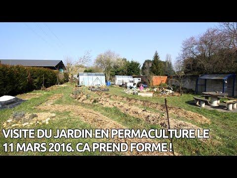 visite de mon jardin apr s 2 ans de permaculture permaculture. Black Bedroom Furniture Sets. Home Design Ideas