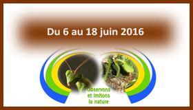 PDC Permaculture 2 semaines en Juin 2016