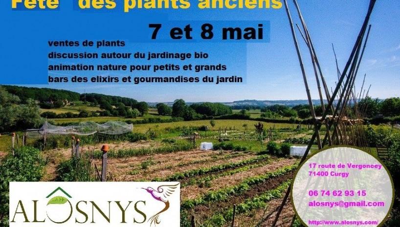 Fête des plants anciens