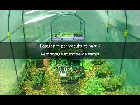 Comment jardiner avec la lune ep 5 permaculture - Comment jardiner avec la lune ...